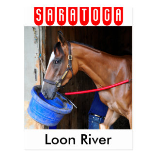 Loon River at Saratoga Postcard
