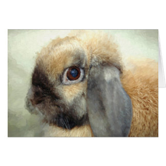 Lop eared bunny card