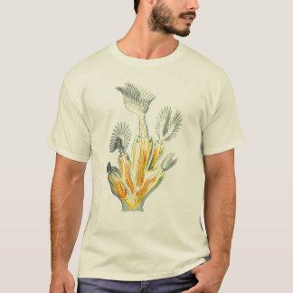 Lophopus crystallinus T-Shirt