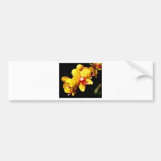 L'orchidée fleurit des fleurs de mariage autocollant de voiture