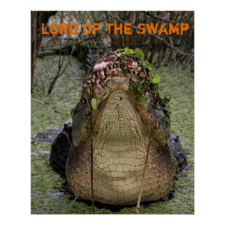 Lord of the Swamp Poster