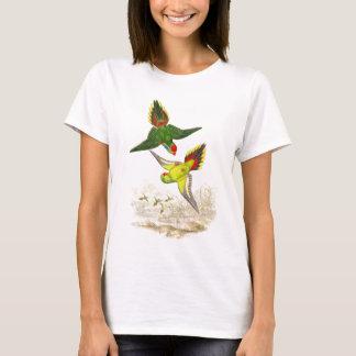 Lorikeet Parrot Birds Wildlife Animals T-Shirt