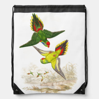 Lorikeet Parrots Birds Animals Wildlife Backpack