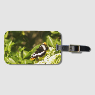 Lorquin's Admiral Butterfly luggage tag
