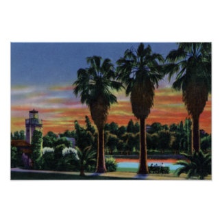Los Angeles California Sunset at Echo Park Poster