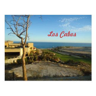 Los Cabos Mexico Postcard