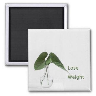 Lose Weight Diet Goals Square Magnet