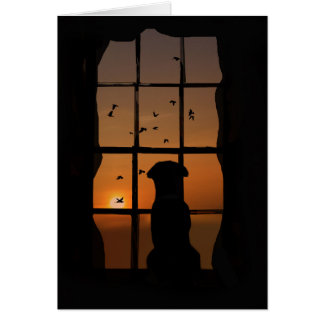 Loss of Dog Sympathy Card