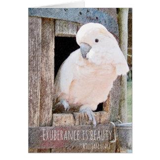 Loss of Pet Cockatoo Blake Quote Custom Sympathy Card