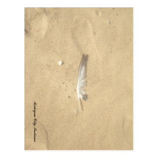 Lost Feather Postcard