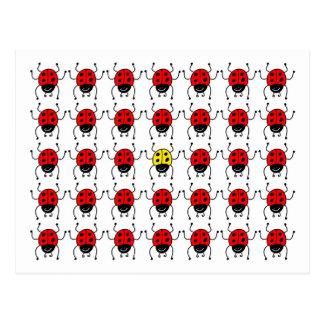 lost ladybug postcard