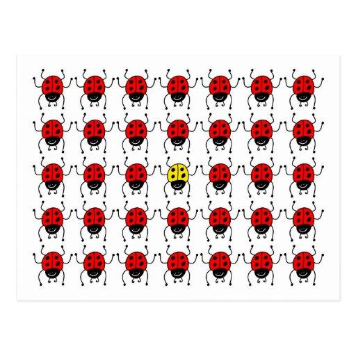 lost ladybug post card