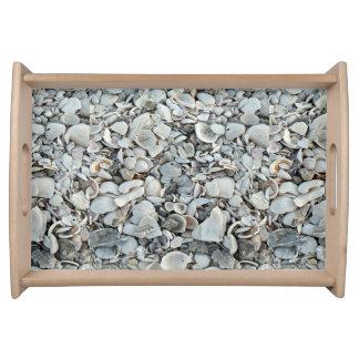 Lots And Lots Of Seashells Serving Tray