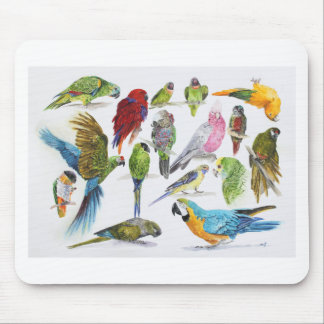 Lots of different Parrots of gifts especially for Mouse Pad