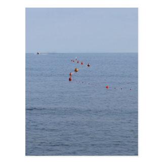 Lots of mooring buoys floating on water in marina postcard