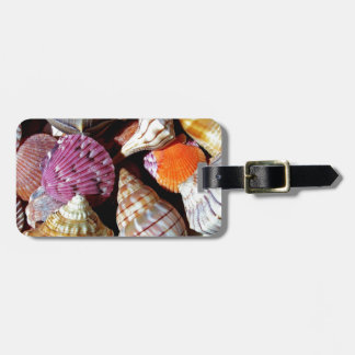 Lots of Seashells by the Sea- Nautical Print Luggage Tag