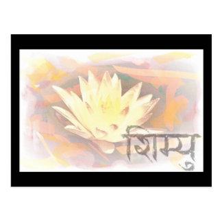 lotus 44 postcard
