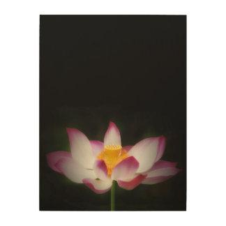 lotus_7751V.jpg Wood Print
