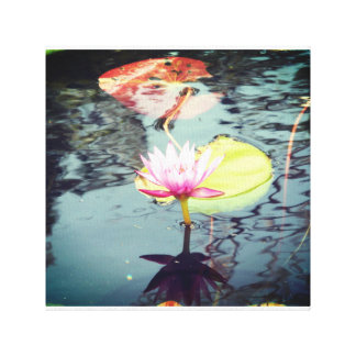 Lotus and Waterlily Canvas Print