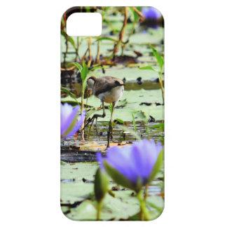 LOTUS BIRD RURAL QUEENSLAND AUSTRALIA CASE FOR THE iPhone 5