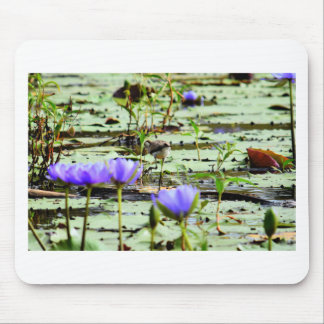 LOTUS BIRD RURAL QUEENSLAND AUSTRALIA MOUSE PAD