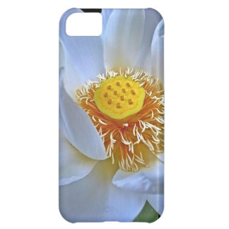 Lotus Blossom Case For iPhone 5C
