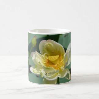 Lotus Blossom Coffee Mug