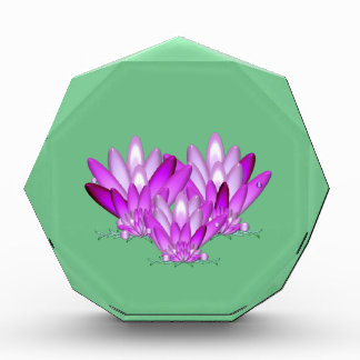 Lotus blossom pink on sea green background