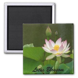 Lotus Blossom Square Magnet