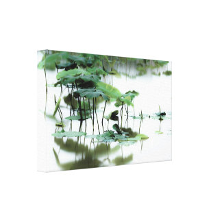 Lotus Fairyland Photographic Art -5 Canvas Print