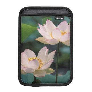 Lotus flower in blossom, China iPad Mini Sleeves