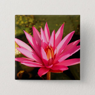 Lotus Flower in the Nature 2 Inch Square Button