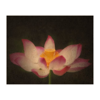 Lotus Flower Photography Great Yoga Om Gift! Cork Paper