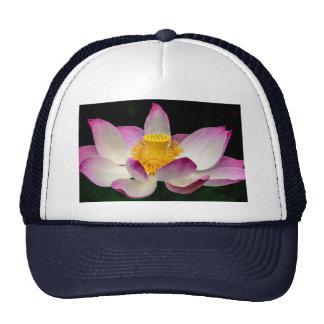 Lotus Flower Photography Great Yoga Om Gift! Trucker Hats