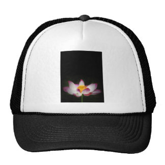 Lotus Flower Photography Great Yoga Om Gift! Hat