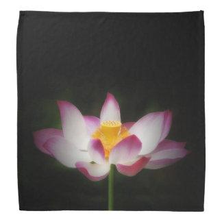 Lotus Flower Photography Great Yoga Om Gift Bandannas