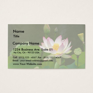 Lotus Flowers Ponds Business Card