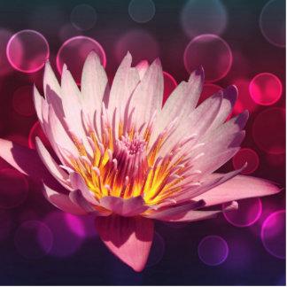 Lotus Standing Photo Sculpture