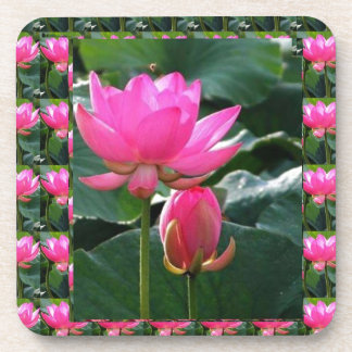 LOTUS Pink and BUD Coasters