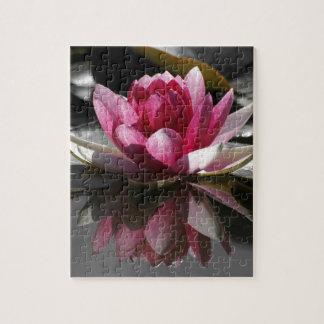 Lotus Puzzles