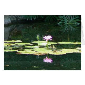 Lotus Reflections Card