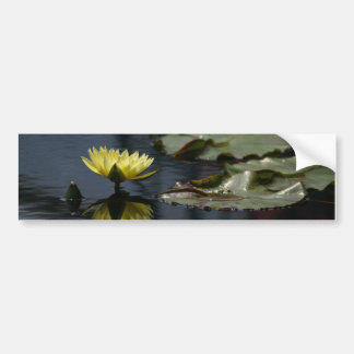 Lotus Waterlily Bumper Sticker