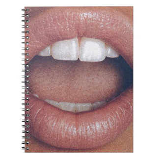 loud mouth notebooks