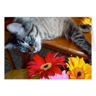 Louie's Flower Bliss Card