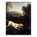 Louis XIV's Dog, Tane Post Cards