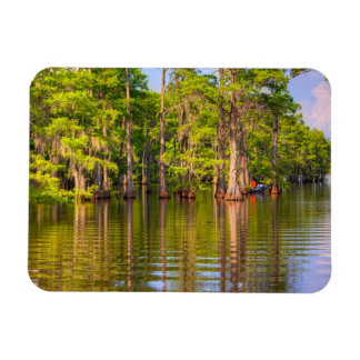 Louisiana Bayou Photo Magnet