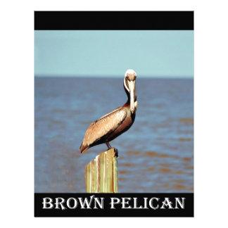 Louisiana Brown Pelican 4.jpg Customized Letterhead