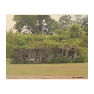 Louisiana Nature by the river Wood Wall Decor