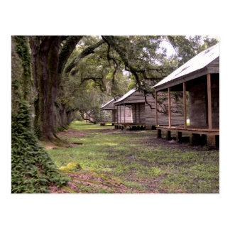 Louisiana Plantation Postcard