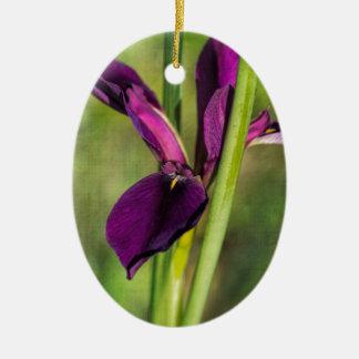 Louisiana Purple Gamecock Iris Ceramic Oval Ornament